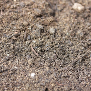 Gro Soil 1